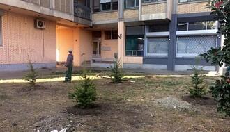 FOTO: U delu Sajmišta posađeni lišćari i četinari, rekonstruisani travnjaci...