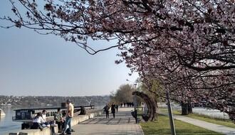 PITALI SMO NOVOSAĐANE: Koji delovi grada su vam omiljeni za šetnju?