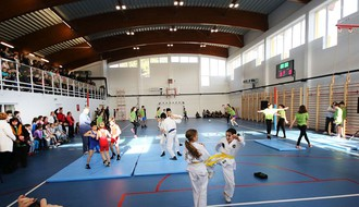 FOTO: Osnovna škola u Ledincima dobila fiskulturnu salu