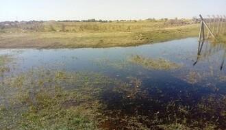 """Zelena patrola: Parku prirode """"Jegrička"""" preti ekološka katastrofa (FOTO)"""