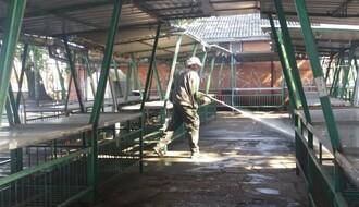 Počelo jesenje čišćenje pijaca (FOTO)