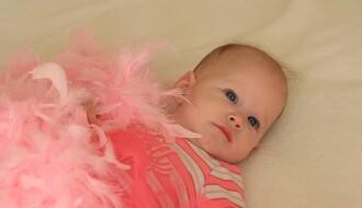 MATIČNA KNJIGA ROĐENIH: U Novom Sadu upisano 99 beba