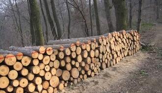 """Pokret """"Odbranimo šume Fruške gore"""" poslao otvoreno pismo ministru Trivanu"""
