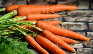 Begečka šargarepa postala proizvod sa zaštićenim geografskim poreklom