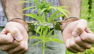 Uhapšena dvojica zbog neovlašćene proizvodnje i prodaje narkotika