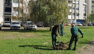 ROTKVARIJA: Započeti pripremni radovi na uređenju zelenih površina
