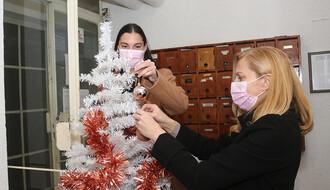 Komšije sa Limana organizuju zajedničko kićenje jelke i druge akcije (FOTO)