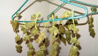 U Novom Sadu prošle godine zaplenjeno 153 kilograma droge