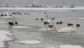 RHMZ: Temperatura za vikend oko nule, jaka košava u čitavoj Vojvodini