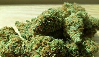 Jedno hapšenje i dve krivične prijave zbog nelegalne trgovine narkoticima
