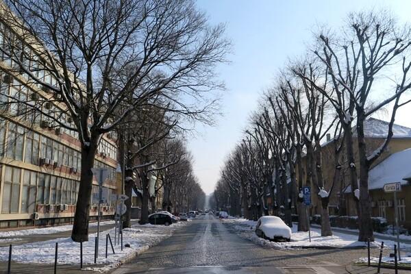 Bez padavina, najviša dnevna u NS do 5°C
