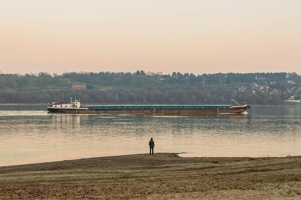 Utopio se član posade broda usidrenog u novosadskoj luci