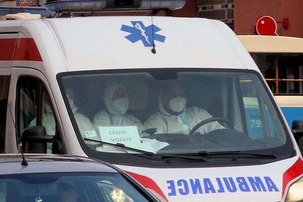 Na lečenju u novosadskim bolnicama 83 kovid pacijenta