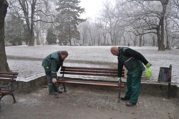 """FOTO: Radovi """"Gradskog zelenila"""" u Futoškom parku, na Vidovdanskom naselju, u Kaću i Kovilju"""
